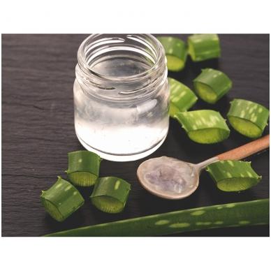 Aloe Vera nektaras 2